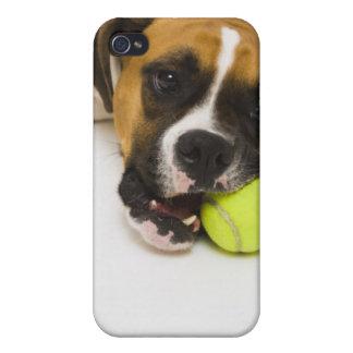 Dog biting tennis ball iPhone 4 cases