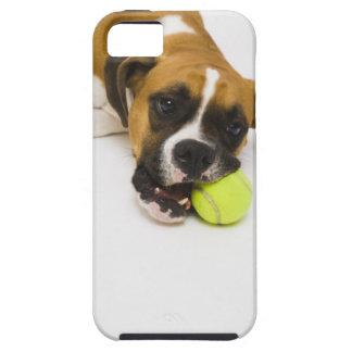 Dog biting tennis ball iPhone 5 covers