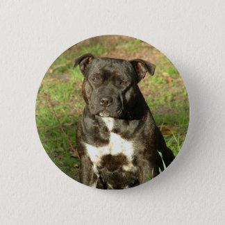 Dog breeds Staffy 6 Cm Round Badge
