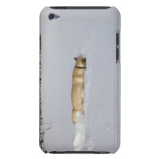 Dog burrowing in snow iPod touch cover
