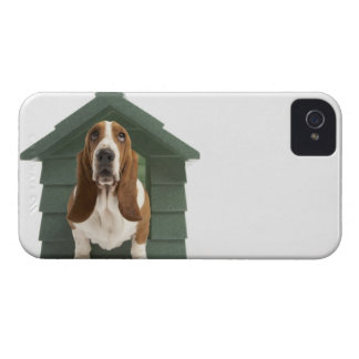 Dog by doghouse iPhone 4 case