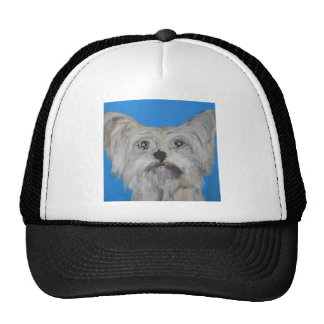 dog by eric ginsburg cap