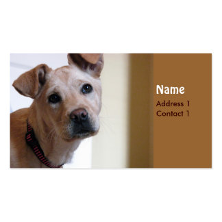 Dog card pack of standard business cards