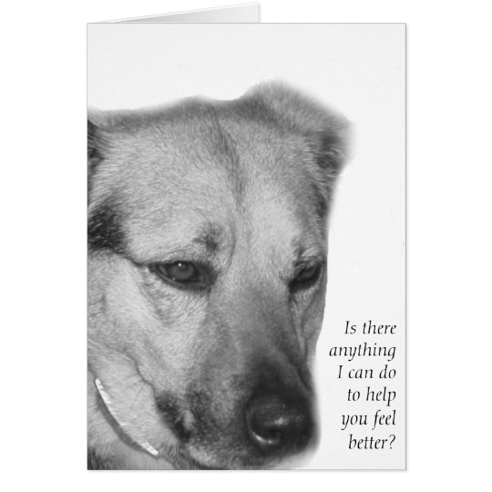 Dog Care and Support Card