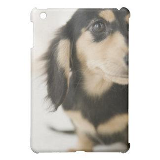 Dog Case For The iPad Mini