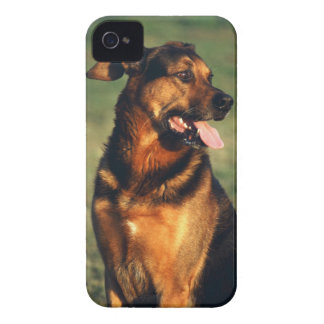 dog Case-Mate iPhone 4 case