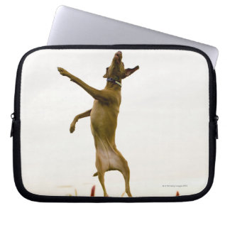Dog catching tennis ball in mid-air laptop sleeves