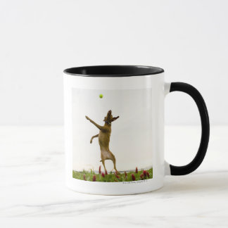 Dog catching tennis ball in mid-air mug