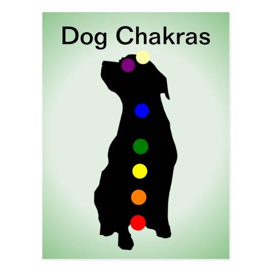 Dog Chakras postcard