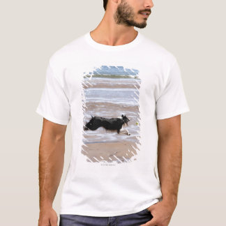 Dog chasing a ball at the beach T-Shirt