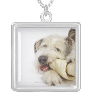 Dog Chewing on Rawhide Bone Silver Plated Necklace