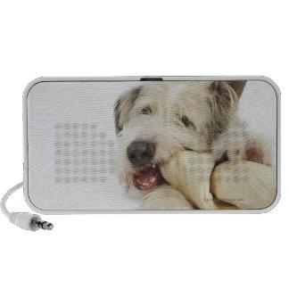 Dog Chewing on Rawhide Bone Portable Speakers