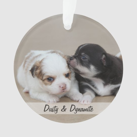 Dog Christmas Ornaments Acrylic Add Photo