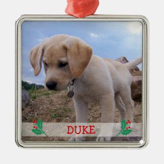 Dog Christmas Ornaments Metal Custom Photo