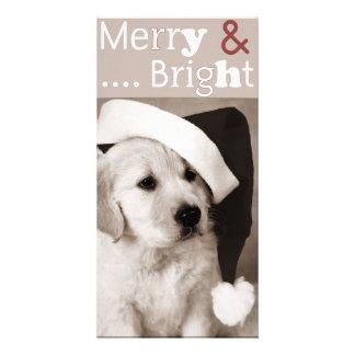 dog christmas photocard card