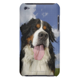 Dog, close-up iPod touch case