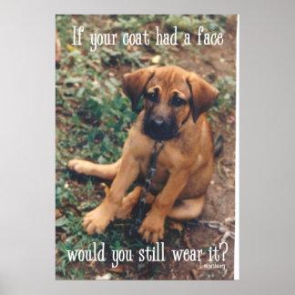 dog coat poster