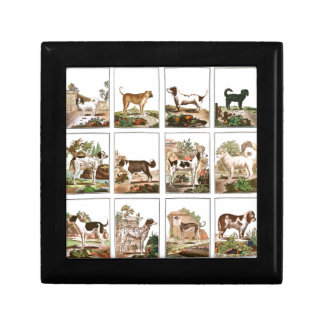 Dog Collection In Vintage Style Keepsake Boxes