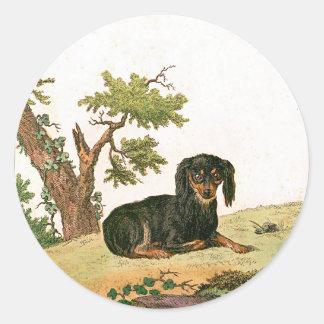 Dog - Continental Toy Spaniel Round Sticker
