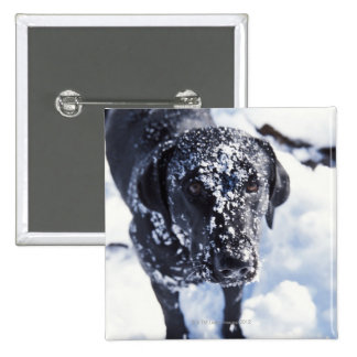 Dog covered in snow 15 cm square badge