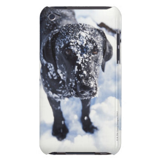 Dog covered in snow barely there iPod cover