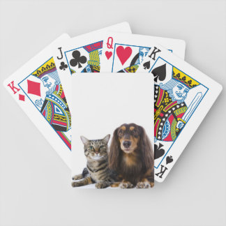 Dog (Dachshund) and cat (Japanese cat) on white Bicycle Playing Cards