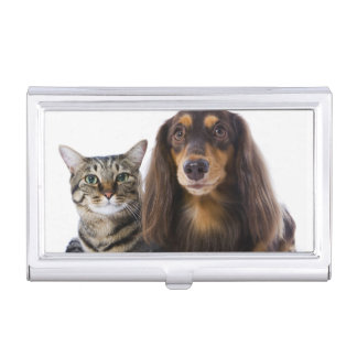 Dog (Dachshund) and cat (Japanese cat) on white Business Card Holder