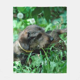 Dog Dachshund Doxie Fleece Blanket