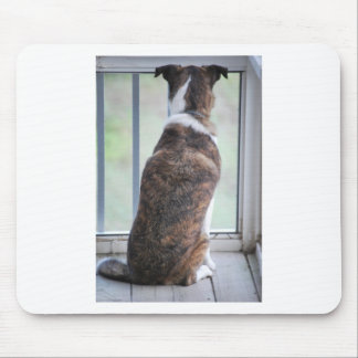 DOG DAY MOUSE PAD