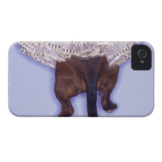 Dog dressed up iPhone 4 cover
