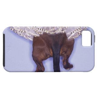 Dog dressed up iPhone 5 case