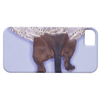 Dog dressed up iPhone 5 cases