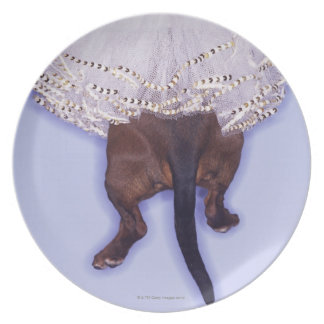 Dog dressed up plate