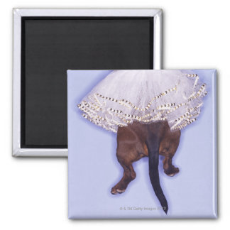 Dog dressed up square magnet