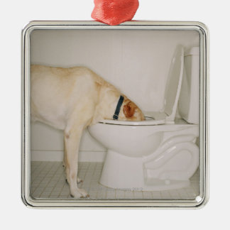 Dog drinking out of toilet christmas ornament
