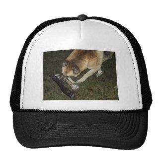 Dog Eating Bone Of Elf Trucker Hat