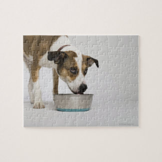Dog eating from bowl jigsaw puzzle