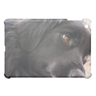 dog face case for the iPad mini