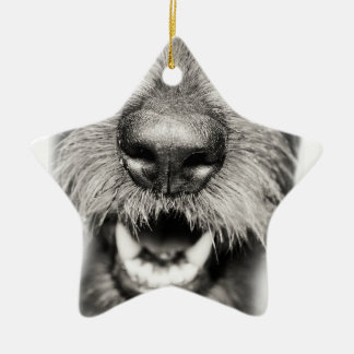 Dog Face Funny Smile Christmas Ornament