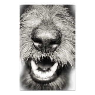 Dog Face Funny Smile Personalised Stationery
