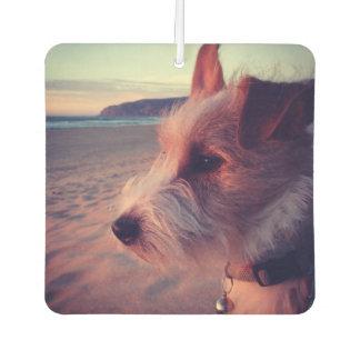 Dog Facing The Beach Car Air Freshener