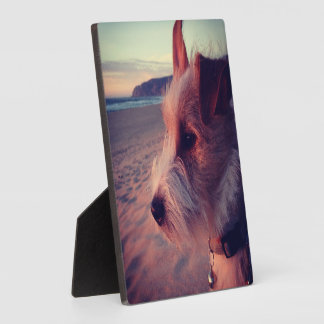 Dog Facing The Beach Plaque