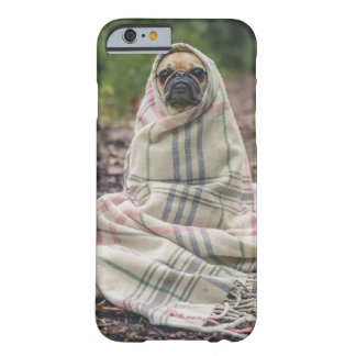 Dog feels cold photo barely there iPhone 6 case