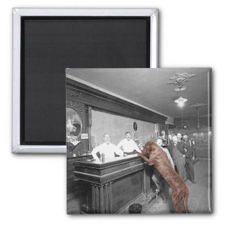 Dog Friendly Saloon Tavern Bar 1900 Photograph Square Magnet