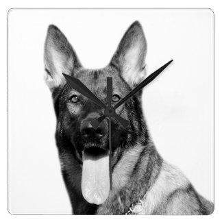 Dog german shepherd animal pet photo black white square wall clock
