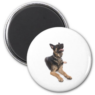 dog - german shepherd magnet