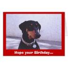 Dog~gone Good Birthday... Card