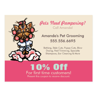 Dog Groomer Pet Spa Coupon Mailer Yorkie Curlers Postcard