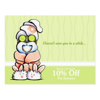 Dog Groomer Spa Shih Tzu Cucumber Coupon Mailer Postcards