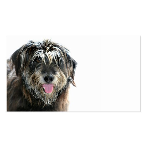 Dog groomers challenge business card